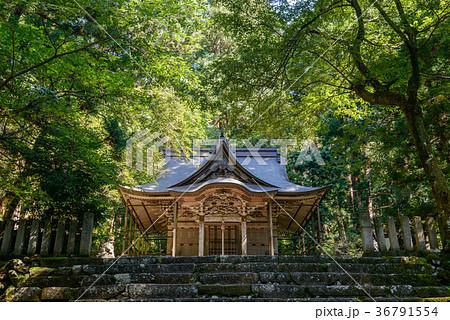 平泉寺白山神社の風景 36791554