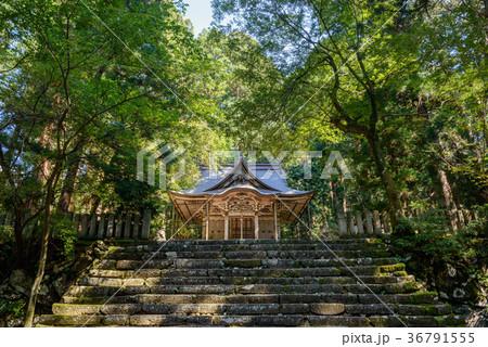 平泉寺白山神社の風景 36791555