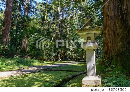 平泉寺白山神社 境内風景 36793502