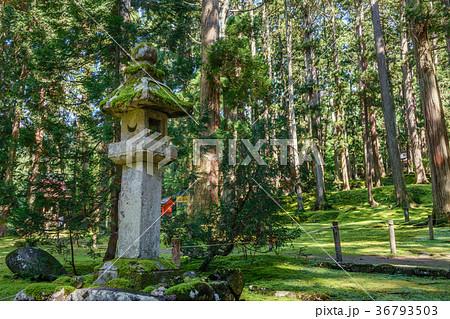 平泉寺白山神社 境内風景 36793503