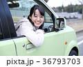 車の窓から顔を出す女の子 36793703