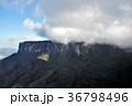 ギアナ高地 カナイマ国立公園 世界遺産の写真 36798496