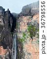 テーブルマウンテン 風景 滝の写真 36798556