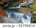 三重の滝、西沢渓谷、滝 36799610