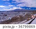 富士山 冬 新倉山浅間公園の写真 36799869