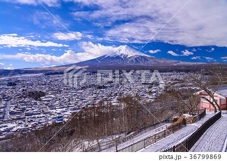 降雪のあった新倉山浅間公園から富士山(山梨県) 36799869