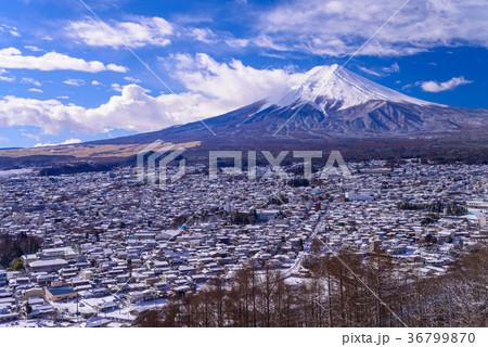 降雪のあった新倉山浅間公園から富士山(山梨県) 36799870