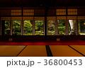 旧三井家下鴨別邸 京都 紅葉の写真 36800453