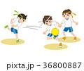 ドッヂボールをする子どもたち 36800887