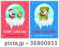 クリスマス ベクター イラストのイラスト 36800933