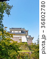 越前大野城 石垣 晴れの写真 36802780