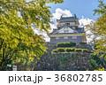 越前大野城 石垣 晴れの写真 36802785