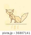 おりがみ 折り紙 折紙のイラスト 36807141