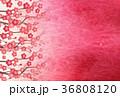 梅 背景 春のイラスト 36808120