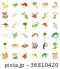 動物 アイコン イコンのイラスト 36810420