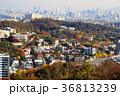 (韓国ソウル)梨泰院周辺の町並み 36813239