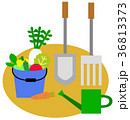 野菜 36813373