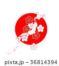 訪日 インバウンド 訪日外国人 日本観光 36814394