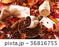 コーヒー豆 36816755