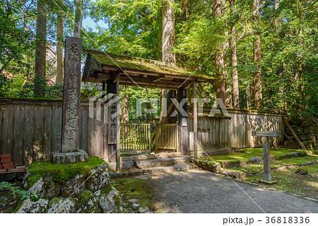 平泉寺白山神社 境内風景 36818336