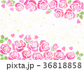 背景 フレーム 花のイラスト 36818858