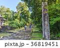 平泉寺白山神社 白山神社 参道の写真 36819451