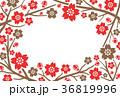 桜 フレーム ベクターのイラスト 36819996