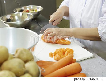 給食の調理員 36820657