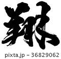 翔 筆文字 漢字のイラスト 36829062