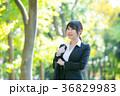OL オフィスレディ 営業の写真 36829983
