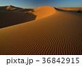 モロッコ メルズーガ 風紋の写真 36842915
