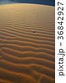 モロッコ メルズーガ 風紋の写真 36842927