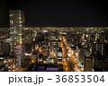 眺め 街並み 夜景の写真 36853504