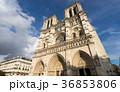 パリ・ノートルダム大聖堂のイメージ 36853806
