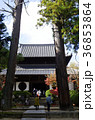 吉備路井山宝福寺の紅葉(縦位置) 36853864