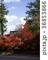 吉備路井山宝福寺の紅葉(縦位置) 36853866