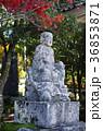 吉備路井山宝福寺の紅葉(縦位置) 36853871