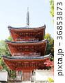 吉備路井山宝福寺の紅葉(縦位置) 36853873