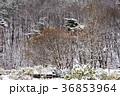 季節 冬 屋外の写真 36853964