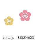 梅 梅の花 梅花のイラスト 36854023