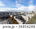 ノートルダム大聖堂のガーゴイルとパリ市街の風景 36854288