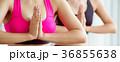 ヨガ 女性 フィットネスの写真 36855638