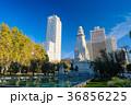 スペイン広場 広場 公園の写真 36856225