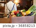 人物 食材 パプリカの写真 36858213