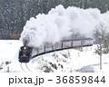 雪景色と紅葉の磐越西線SL 36859844