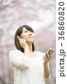 桜の前で音楽を聴く女性 36860820