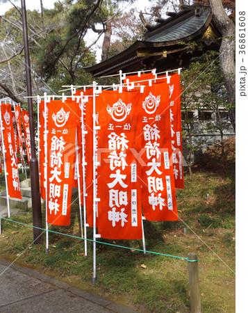 浅間神社お稲荷さんの赤いのぼり 36861608
