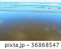 海 波 殿下海水浴場の写真 36868547