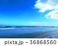 海 青空 波の写真 36868560