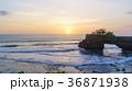夕焼け 海 太陽の写真 36871938